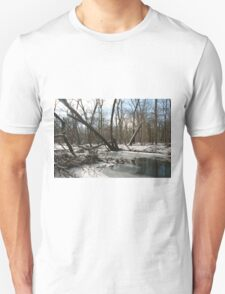 fading winter T-Shirt