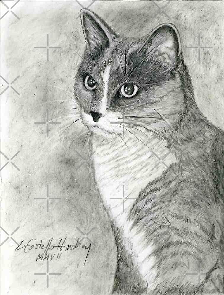 Tabby Cat Portrait by Linda Costello Hinchey