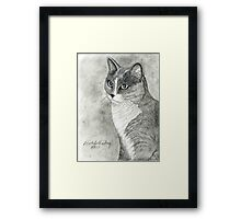 Tabby Cat Portrait Framed Print