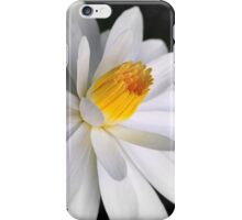 Floating on a calm sea iPhone Case/Skin
