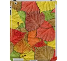 Fall leaves iPad Case/Skin