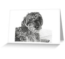 Schnell, Wire Haired Dachschund (cropped edge) Greeting Card