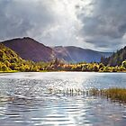 The Lower Lake at Glendalough by Derek Smyth