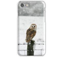 Barn Owl in snow iPhone Case/Skin
