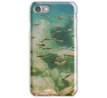 Little Fish in green Sea iPhone Case/Skin