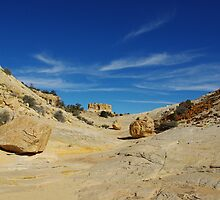 Multicolored rocks in side canyon near Spencer Flat Road, Utah by Claudio Del Luongo