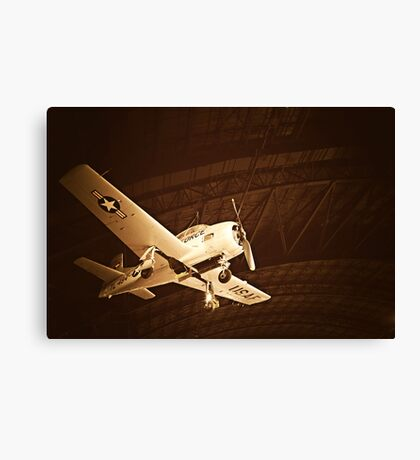 Beauty in the Air VII Canvas Print