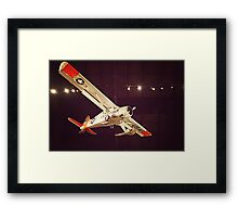 Beauty in the Air VIII Framed Print