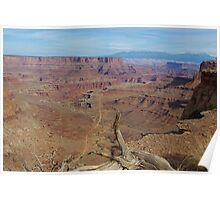 Dry log, abyss, road and mountains, Canyonlands National Park Poster