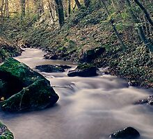 THE STREAM - Iphone case by Rob  Toombs