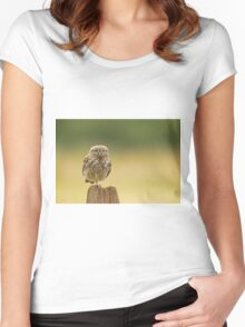 Little owl balancing  Women's Fitted Scoop T-Shirt