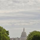 Shuttle Over Capitol by Edward Perry