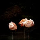 Sweet Dreams by KBritt