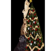 THE FINISHING TOUCH ANIMALS DECORATING CHRISTMAS TREE IPHONE CASE #2 by ✿✿ Bonita ✿✿ ђєℓℓσ