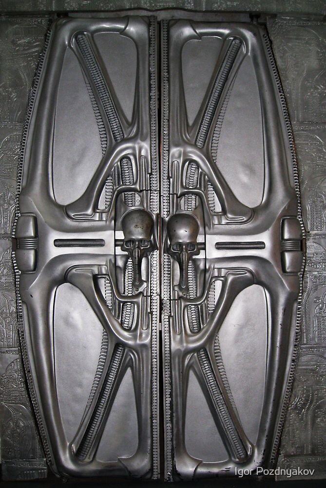 Enter Alien. Doors in HR Giger museum. Gruyeres, Switzerland 2012 by Igor Pozdnyakov