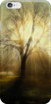 FIRE TREE - Iphone case by Rob  Toombs