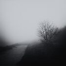 Over the fog by andaluzina