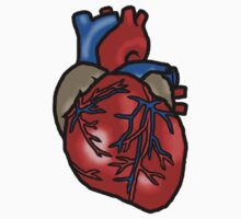 Anatomically Correct Heart by Bowieisgod