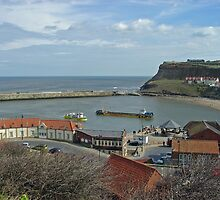 Whitby Lower Harbour  by Rod Johnson