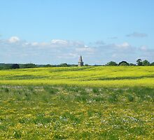 Church Across The Meadow by Lucy Wilson