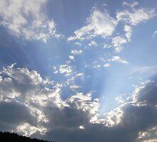light show by angelawillene