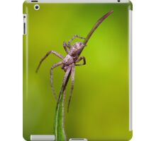 Tiny Spider On A Leaf iPad Case/Skin