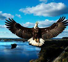 Spread Eagle MIssissippi River by Randy Branham