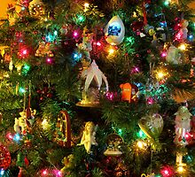 O Lovely Tree! by Sandra Fortier