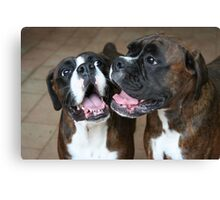 Luthien & Arwen -Boxer Dogs Series- Canvas Print