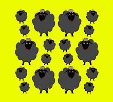 A whole herd of Black Sheep by M Fernandez