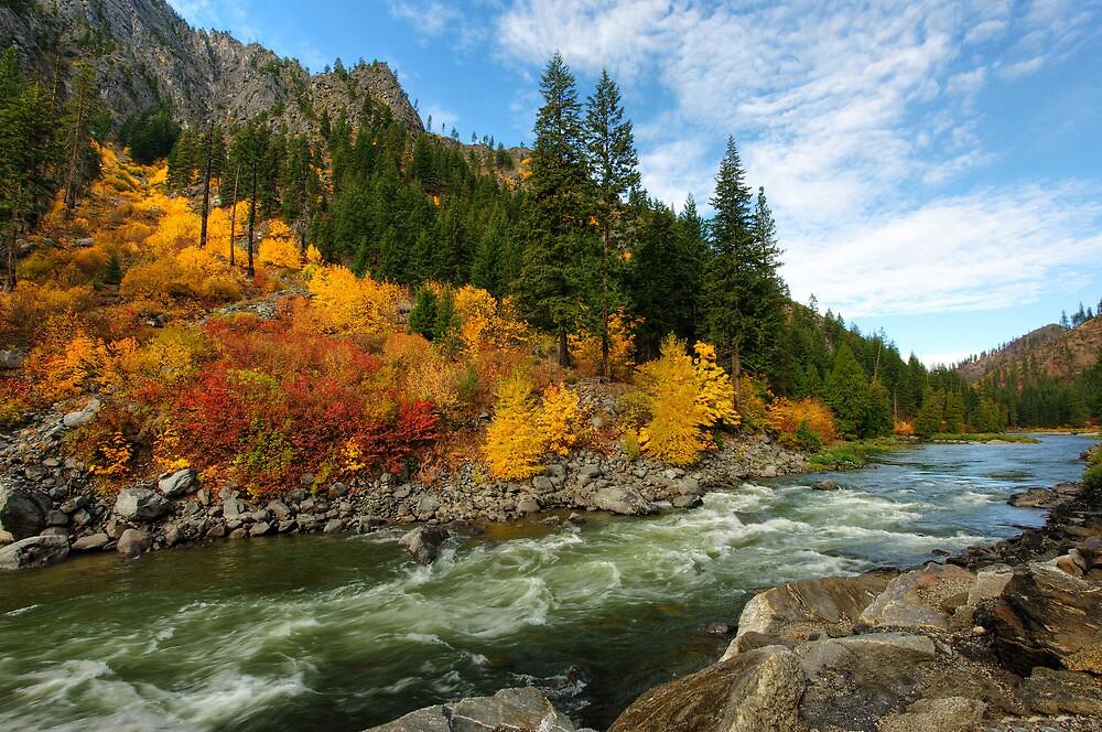 Beautiful Autumn by Dan Mihai