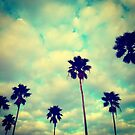 Palms by Dev7in