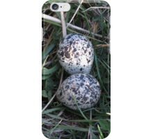 eggs in a nest iPhone Case/Skin