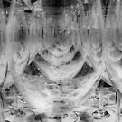 Wine Glasses by Barbara  Brown