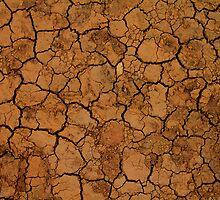 Cracked Earth by Brian Hadwin