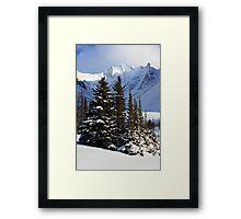 Coniferous island Framed Print