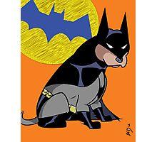 Batdog (as Pittbull) Photographic Print