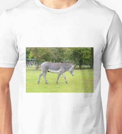Grevy's Zebra Unisex T-Shirt