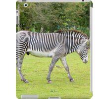 Grevy's Zebra iPad Case/Skin