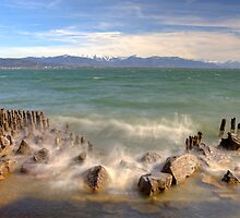 Lake Constance by Joana Kruse