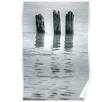 wooden piles Poster