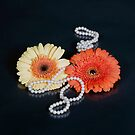 gerberas with pearls by Joana Kruse
