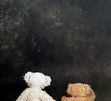 teddy bears by Joana Kruse