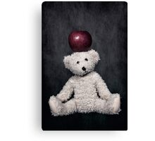 teddy bear Canvas Print