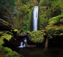 Gorton Creek Falls I by Tula Top