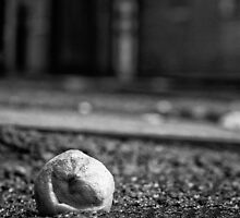 Lemon Squash by Tony White