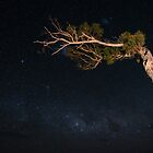 Night Sky, Southern Tasmania by NickMonk