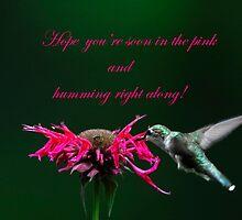 Hummingbird and Bee Balm by Randy & Kay Branham