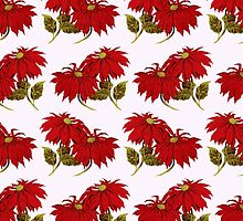 Poinsettia Flowers, Leaves - Red Green by sitnica