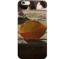 Finding Your Niche iPhone Case/Skin